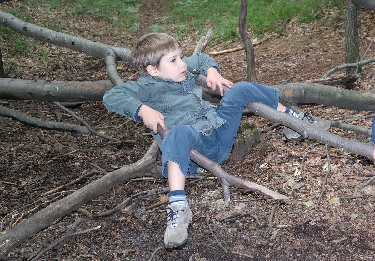 waldkindergarten-dresden-baum